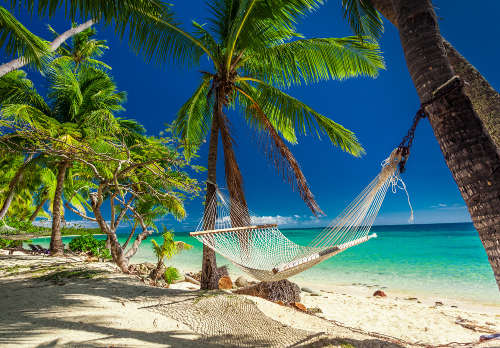 Coconut palm fringed beach with hammock, fiji